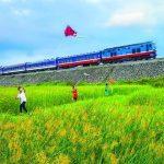 Điều lệ tổ chức và hoạt động của Công ty CP Thông tin tín hiệu Đường sắt Sài Gòn.